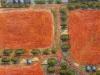 Millewa Farm